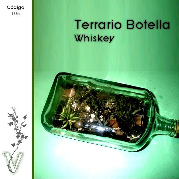 Terrario en botella de whiskey terrarios y kokedamas - Como construir un terrario ...